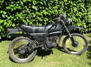 DTMX 125 cc MEMBRES : Personnalisées Droite10