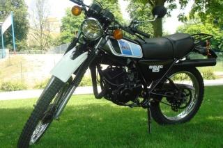 DTMX 125cc Membres / Mod. 1977 Dsc02712