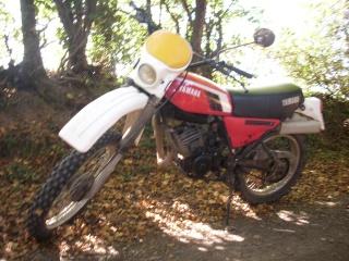 DTMX 125 cc Membres / Mod. 1979 Dt0310