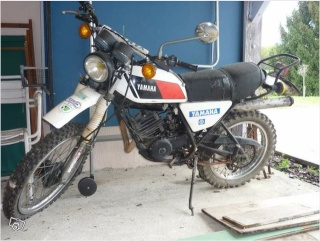DTMX 125cc Membres / Mod. 1978 Dtmx11