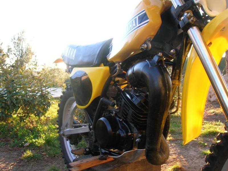 photo dtmx jaunes Dtmx_011