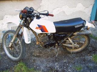 DTMX 125cc Membres / Mod. 1981 Img00011