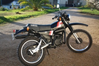 DTMX 125cc Membres / Mod. 1981 Img_0012