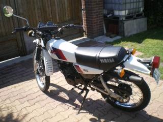 DTMX 125cc Membres / Mod. 1981 Imgp2910