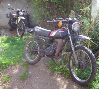 DTMX 125 cc Membres / Mod. 1979 Mx1p10