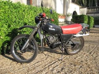 DTMX 125 cc MEMBRES : Personnalisées N_005110