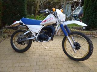 DTMX 125cc Membres / Modèles endurisés P1010810