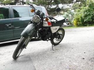 DTMX 125cc Membres / Mod. 1978 P1020211
