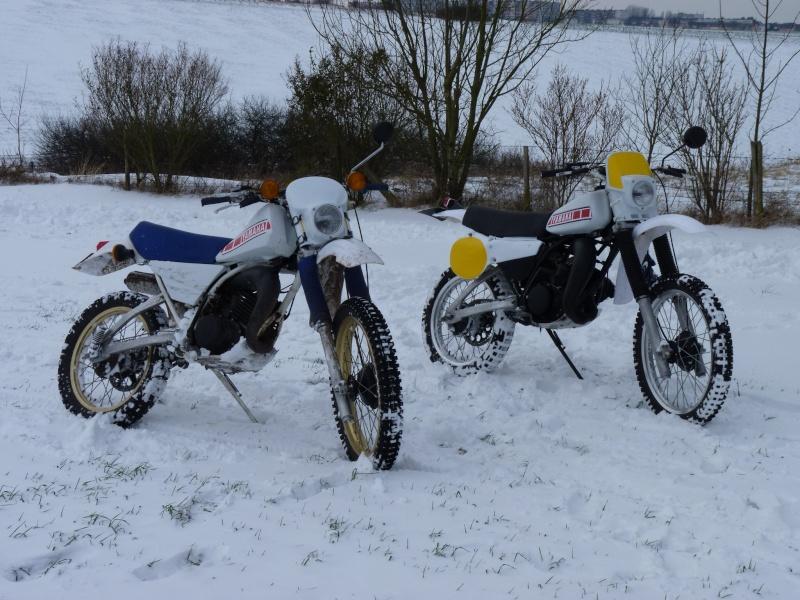 Sortie dans la neige P1030111