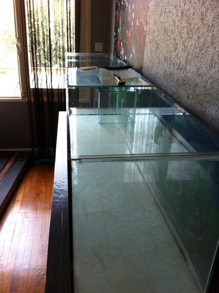Aqua-terrarium de Syllare  Img_0333