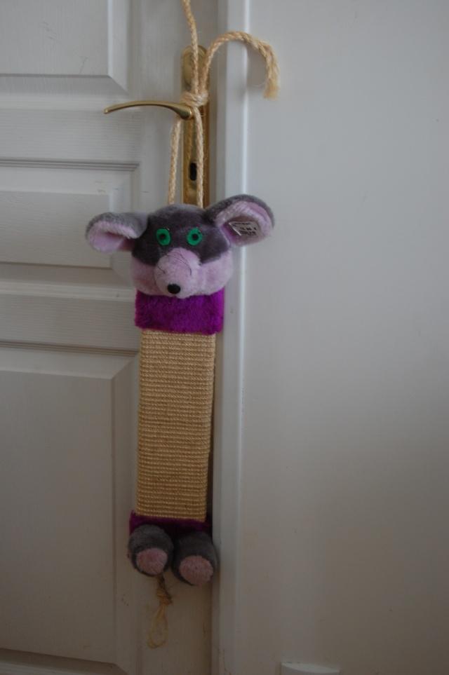 griffoir, arbre à chat, ... pour Pimousse et Cassy Dsc_0521