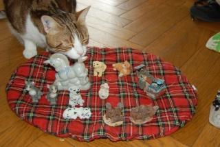 animaux en résine (chien, chat, écureuil, hibou)+ licorne en je sais pas quoi, pour facture de Cassy Dsc_0632
