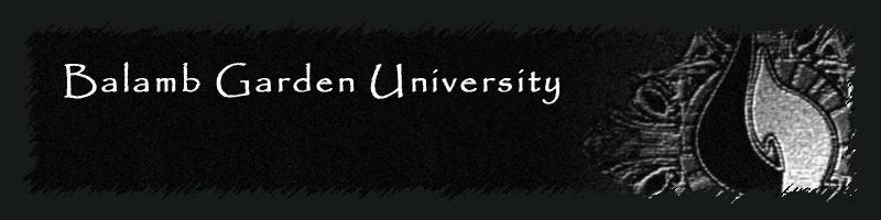 Balamb Garden University