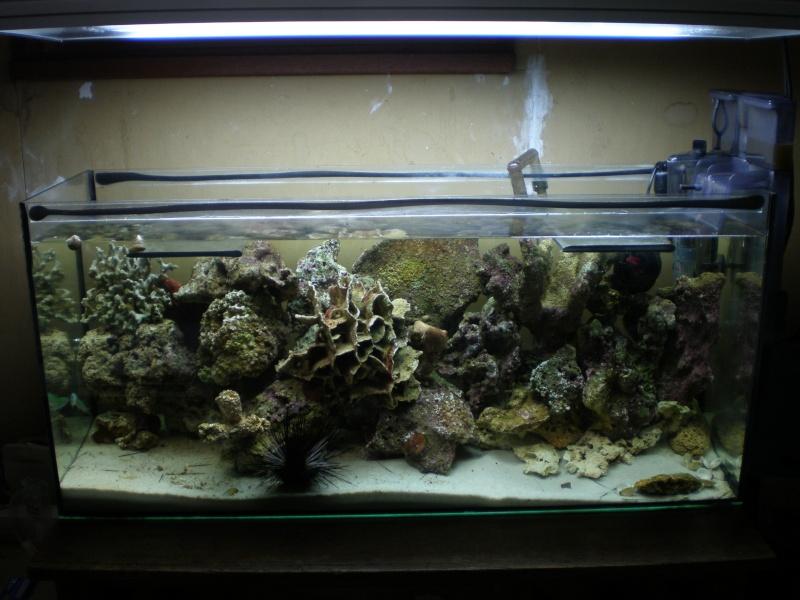 projet eau de mer P4190010