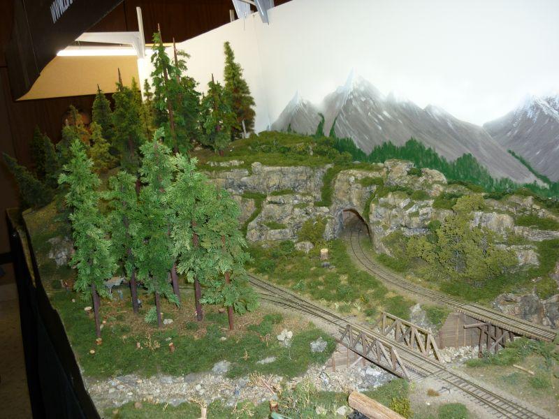 Photos - EXPO - Walferdange (Lux) - 12.11.2011 P1020616