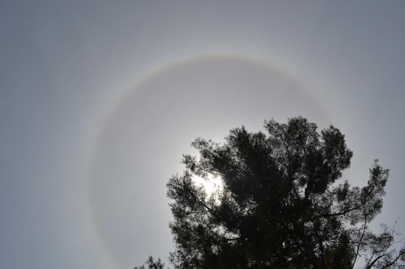 2012 : un halo étrange autour du soleil  - Page 2 Dsc_0312