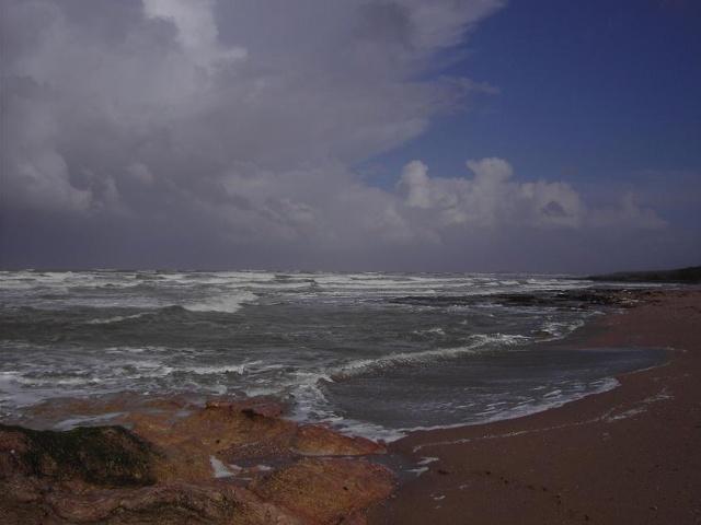 vacances bords de Mer Pict0712
