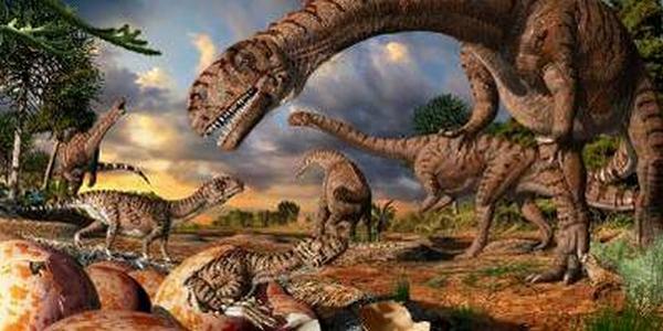 Paleontologie, l'actu... - Page 4 Massos10