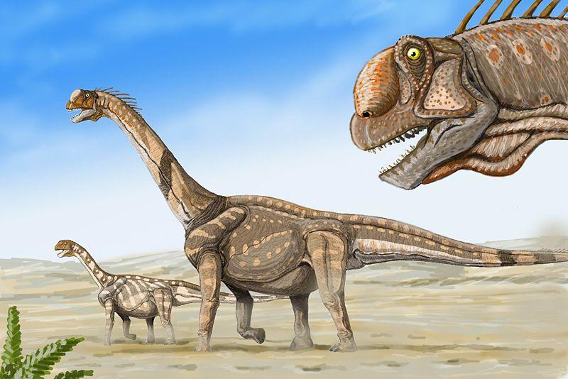 Paleontologie, l'actu... - Page 3 Rtema501