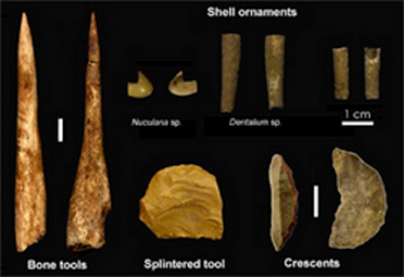 Paleontologie, l'actu... - Page 3 Rtema529