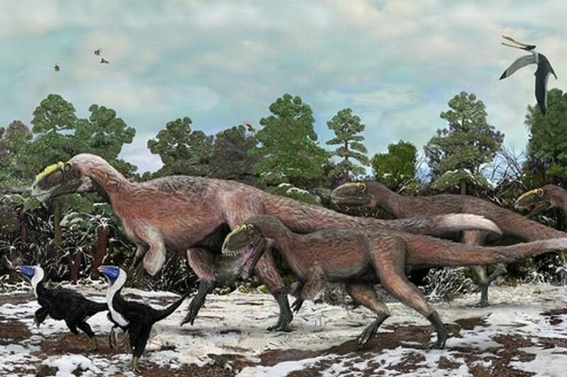 Paleontologie, l'actu... - Page 5 Yutyra10