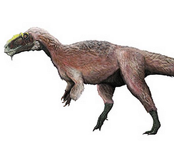 Paleontologie, l'actu... - Page 5 Yutyra11