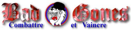 Emblêmes des groupes, français ou étrangers. - Page 5 Badgon10