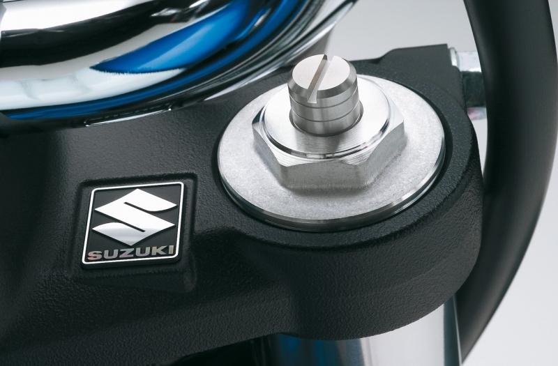 SFV 650 Gladius Get_im10