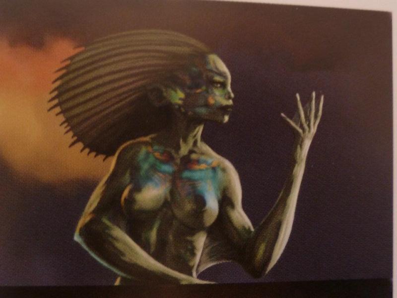 spirit (femme) 31201810