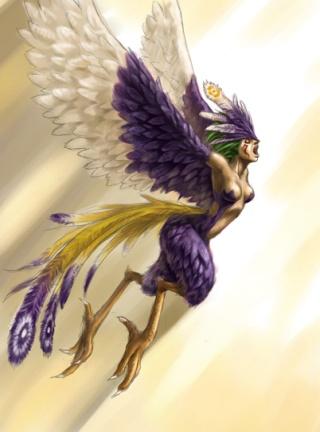 Les fils du Ciel Harpie10