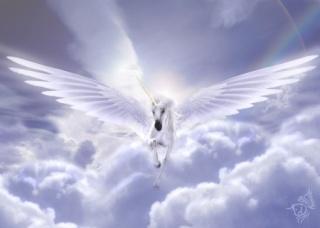 Les fils du Ciel Pegase10