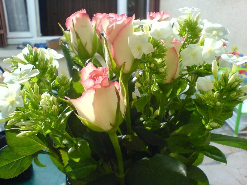 Anniversaire des membres du forum - Page 22 Roses16