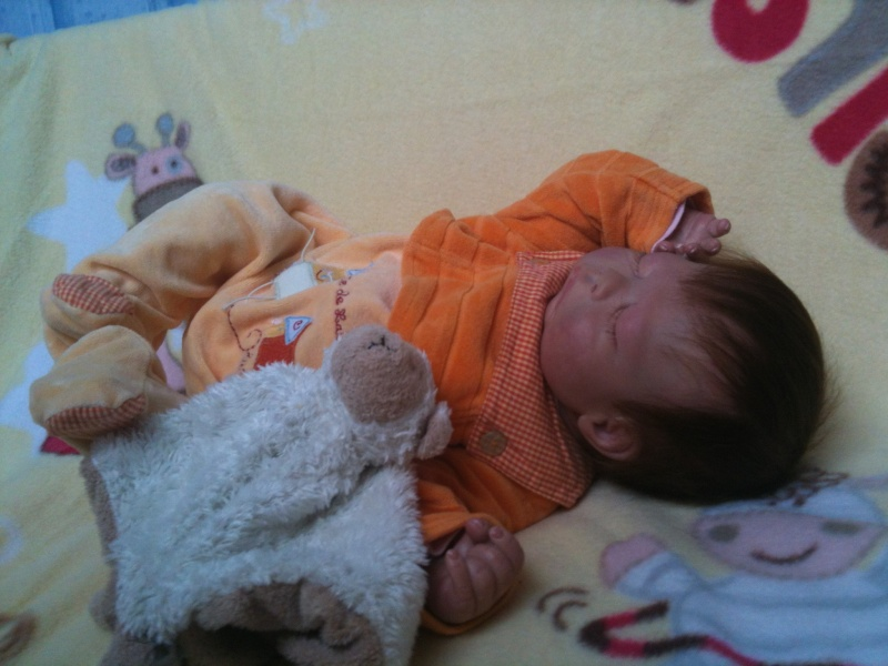 Nino's nursery Img_2214