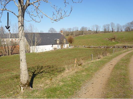 Ferme équestre dans le Cantal, dispo de suite Achat-10