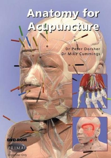 3D Anatomy for Acupuncture (Win/Mac) 56008a10