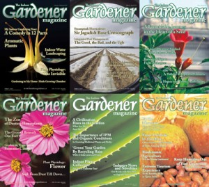 The Indoor Gardener 2011 Full Year Collection The-in10