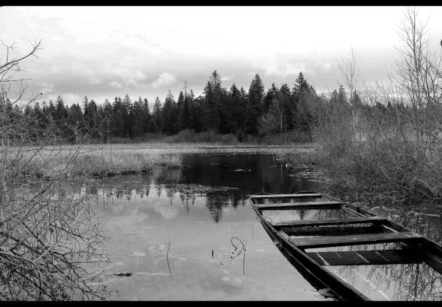 L'étang dans la barque Img_0710