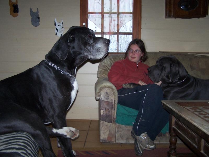 [Sondage] Top 10 des chiens les plus impressionants - Page 2 100_3310