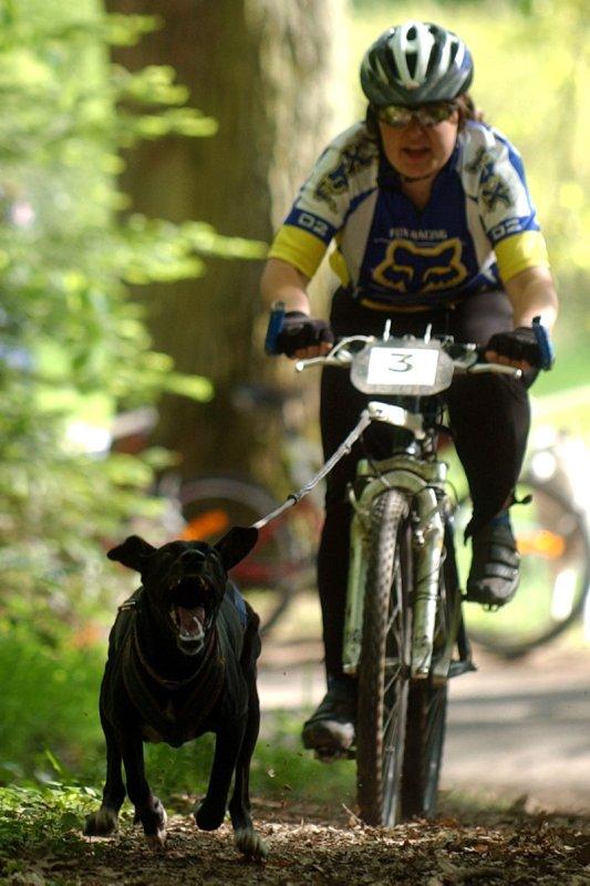 """Le team """"des chiens, des sport, une seule passion"""" Dsc_0210"""