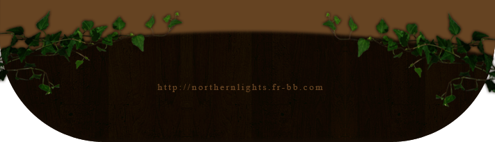 northern lights Yj4xv10