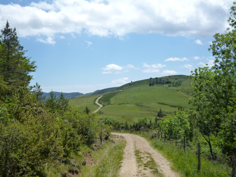 6 jours en Lozère (printemps 2012) Lozare28