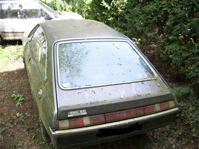 qu'est ce que j aime le limousin Imgp9110