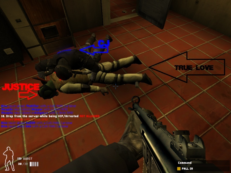 ADD some funny screens here 4 the fun =) Swat4-12
