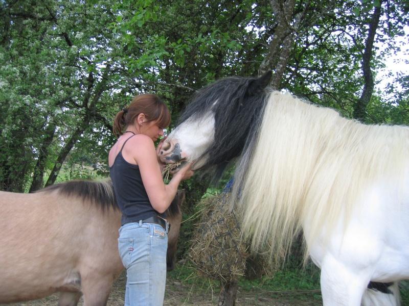 Une photo de vous et votre cheval - Page 2 3-05-010