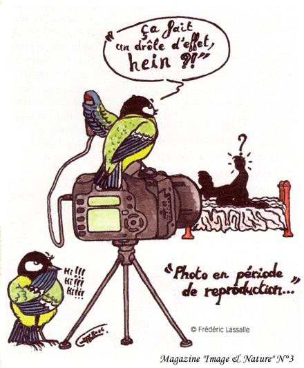 Pas de photos au nid !!! Repro10