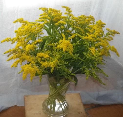 Bouquets !!! 10072010