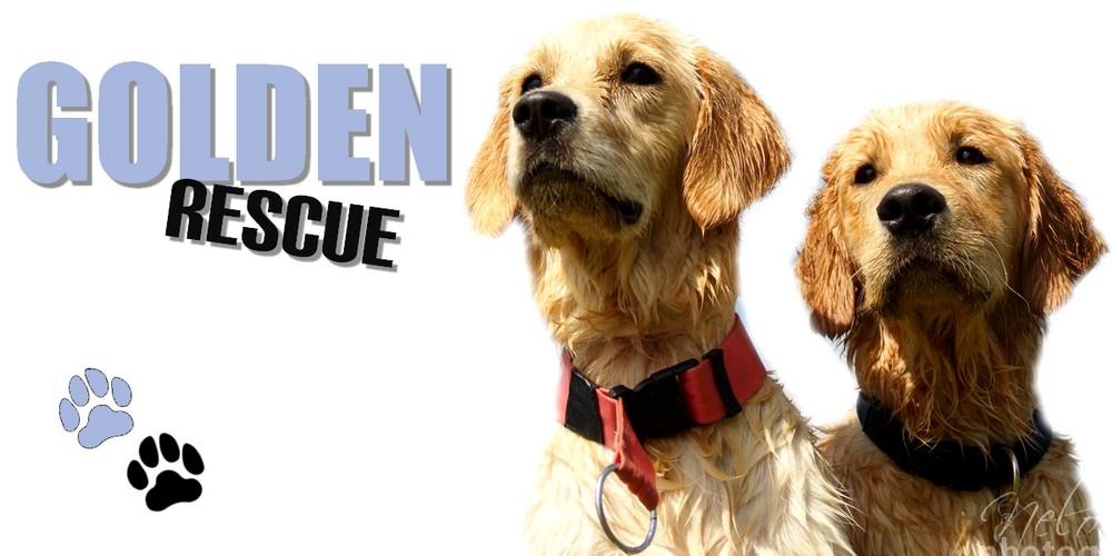 Golden-Rescue