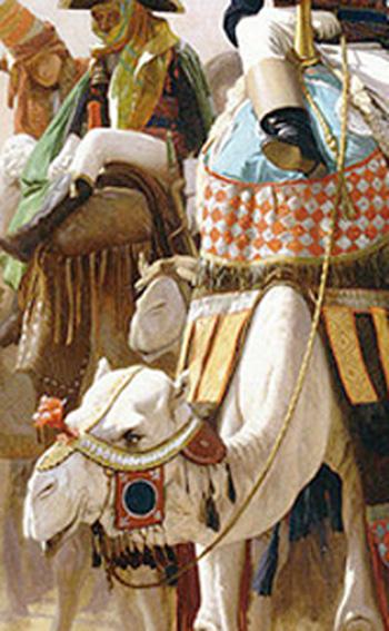 Bonaparte en Egypte à dromadaire - Page 2 Dromad13