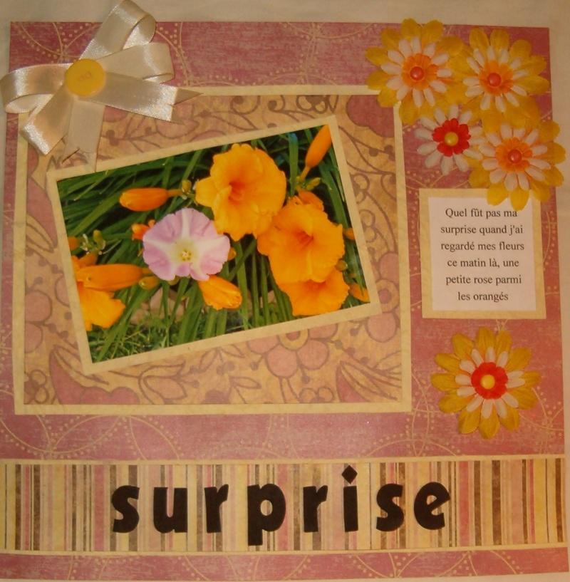 28 juillet -------- surprise Fleur10