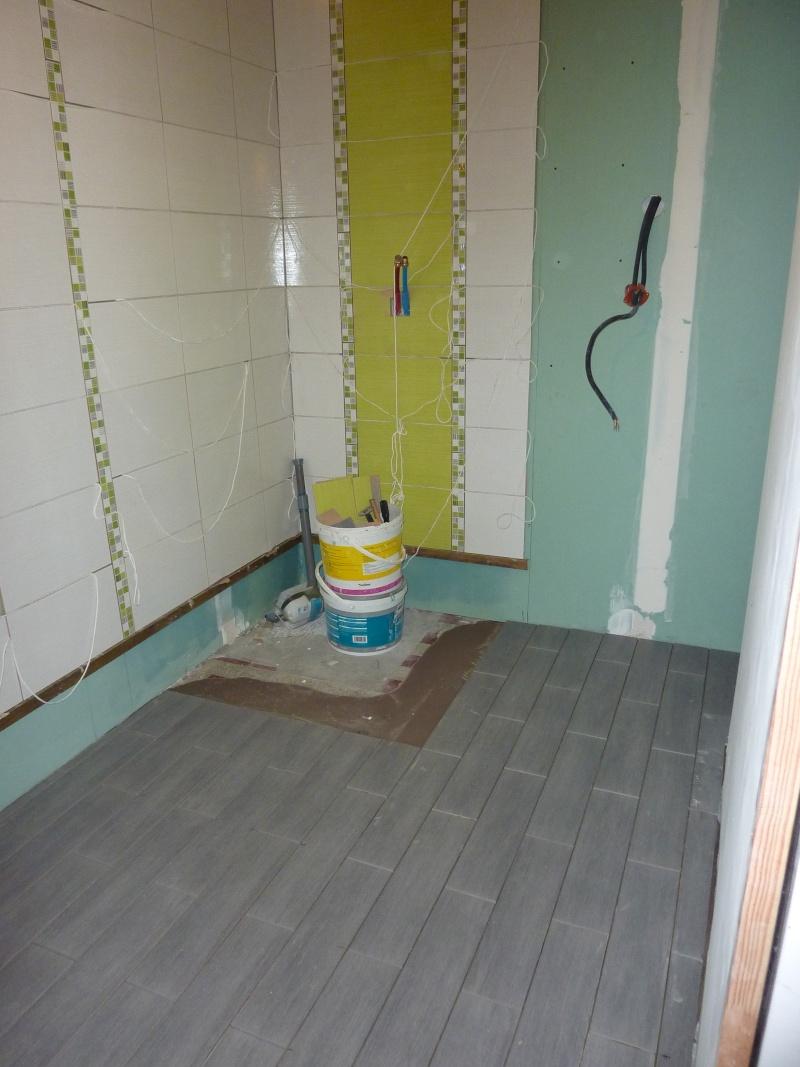 La salle de bain de Cha. Travaux en cours photos P 4et5 - Page 5 P1040218
